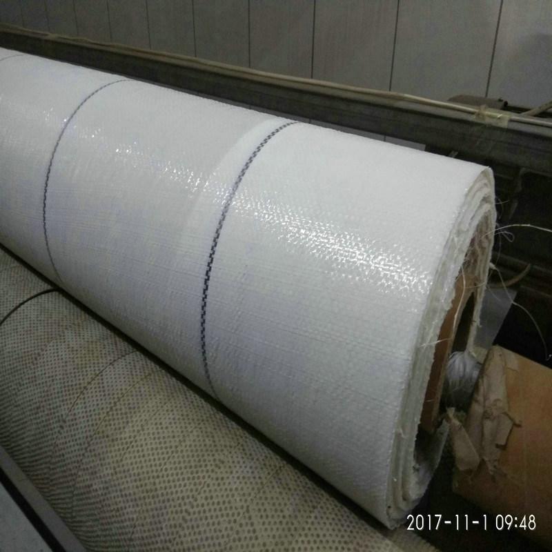 白色編織地布, 青海150克PE防草地布