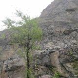 防止山体滑坡的网. 山体滑坡兜石网. 滑坡拦石防护网
