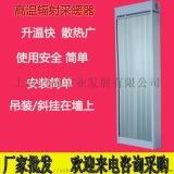 九源电热红外辐射采暖器SRJF-10电加热板