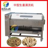 全自動洗姜機,土豆生薑清洗皮機廠家直銷