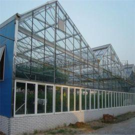 玻璃大棚温室建设 玻璃温室造价