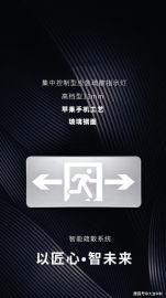 智能应急照明系统单点控制, 区域控制, 集中控制