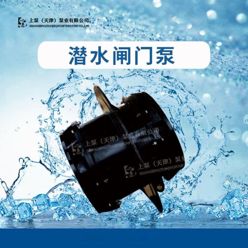 江蘇600QGWZ全貫流閘門泵廠家