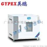 广州 电热鼓风干燥箱强干燥性能优越