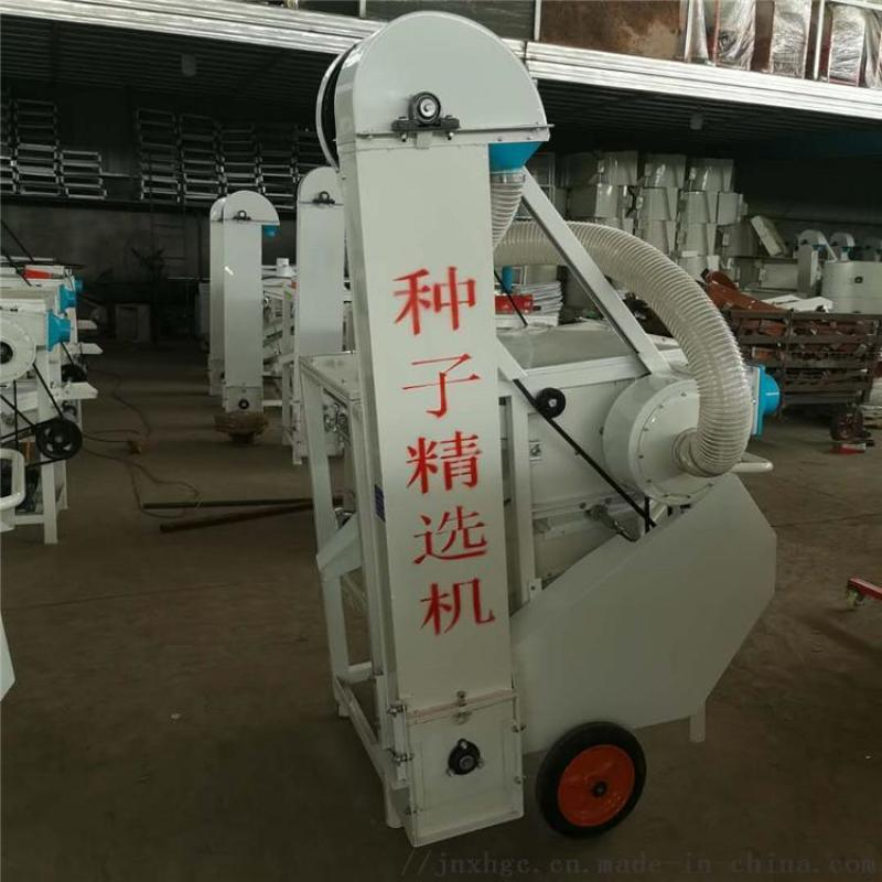 厂家供应多功能种子筛选机 花生米除尘除杂筛选机