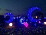 灯光节展览策划公司梦幻灯光节生产销售厂家
