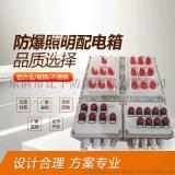 厂家直销 防爆照明配电箱BXMD 多回路照明动力箱