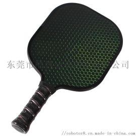 高品质碳素碳桨球拍Pickleball