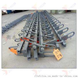 供应桥梁伸缩缝-C型伸缩缝装置