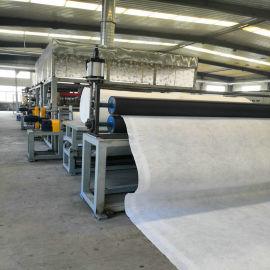 三维复合排水网5mm厚检测合格