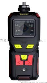 DL-TDS泵吸式甲醛检测仪
