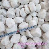 白色鹅卵石报价 园艺白色鹅卵石 铺面白色鹅卵石