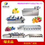 大型果蔬清洗風乾生產線(A)