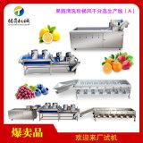 大型果蔬清洗风干生产线(A)