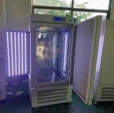 人工氣候箱,人工氣候培養箱