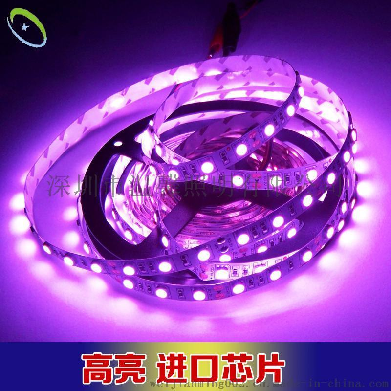 新款5050贴片LED软灯带12V低压粉红室内KTV装饰灯条 高亮