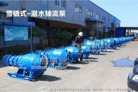 天津中藍臥式雪橇式潛水軸流泵、雪橇式潛水泵