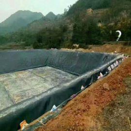 鱼塘护坡防渗膜0.5mm