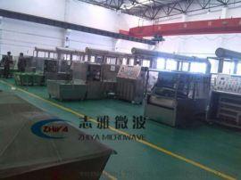 广州志雅化工原料微波干燥设备,千万销量