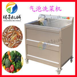 小型 单缸果蔬清洗机 商用