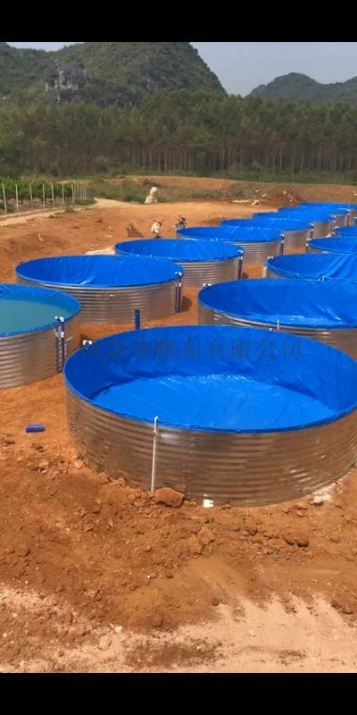高密度圓形養殖水池 支架魚池鍍鋅板水箱