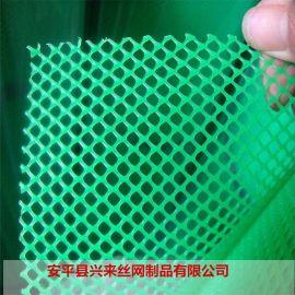 5mm塑料网 水产养殖网 塑料养鸡网厂家