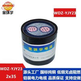专业定做0.6/1KV金环宇低烟无卤环保电缆WDZ-YJY23-2*35价钱实惠