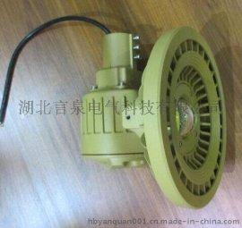 BLD610-a60A6单灯头LED防爆路灯