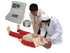 心肺复苏训练模型(BZ-CPR580)
