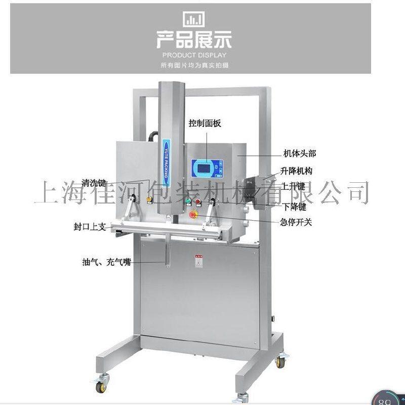 上海佳河大包裝升降式外抽真空包裝機