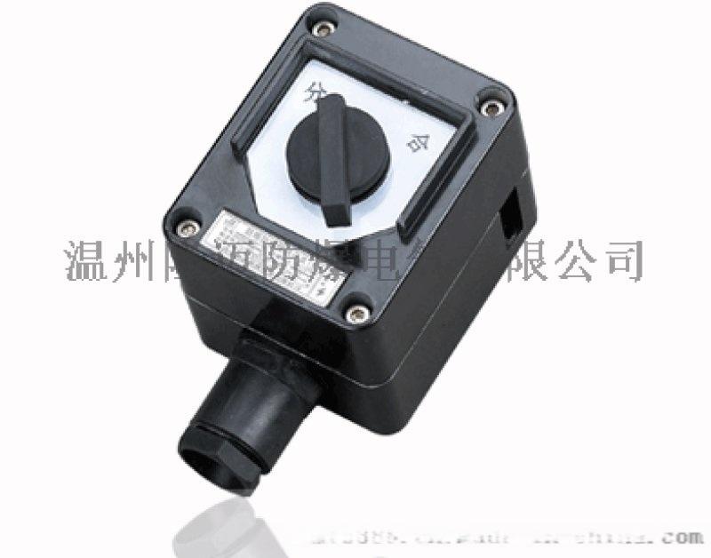 BZM8060-10A单极防爆防腐照明开关