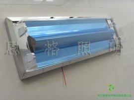 厂家批发0.6米直边净化灯/不锈钢洁净灯