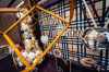昆明花語花香氣球裝飾工作室