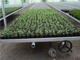 温室大棚可移动苗床/苗床网片华耀制造