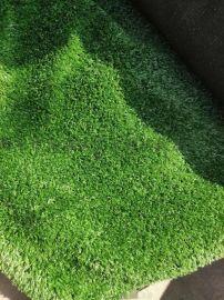 西安绿草坪假草坪人造草坪仿真草坪