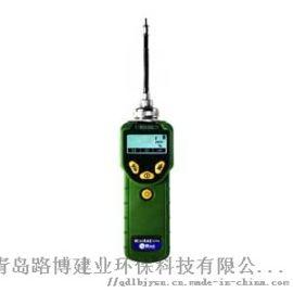 PGM-7300 M VOC检测仪