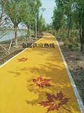 艺术透水地坪彩色无砂混凝土地坪透水路面海绵城市排水道路材料