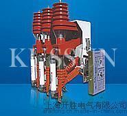 FN11-12RD/T125-31.5户内高压负荷开关