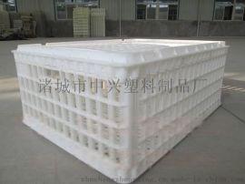 塑料鸡笼 成鸡周转筐 专业鸡蛋筐厂家