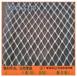 热镀锌钢板网 深圳音响网 来图生产 东莞电镀锌网 出口