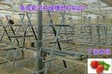 草莓立体种植槽规格13CM18CM23CM