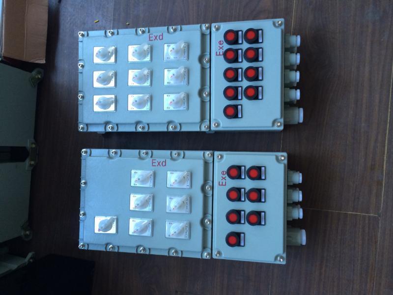 防爆照明動力配電箱 IIB IIC 根據圖紙定做 廠家直銷 多迴路