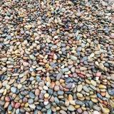 鵝卵石價格_1-8公分天然鵝卵石批發價格_渝榮順!