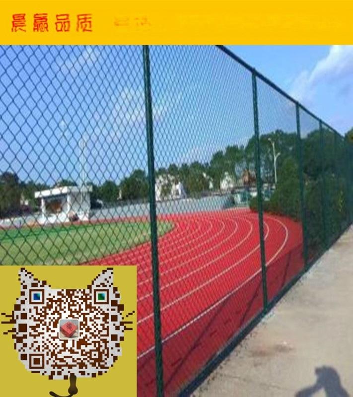 晨赢专业体育场围网  球场围网  运动场围网