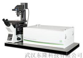 PicoQuant MicroTime 200 时间分辨共聚焦荧光显微系统