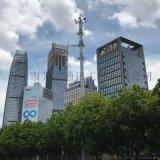 公司一站式生產製造廣場公園美化燈杆塔