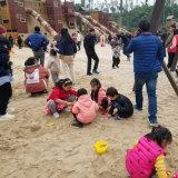 幼儿园海砂_儿童乐园海砂价格_渝荣顺!