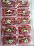 长沙红星水果批发商