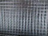 镀锌电焊网  安平厂家直销镀锌电焊网