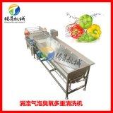 大型渦流洗菜機 火龍果清洗機 韭菜清洗機 非菜切絲機配套機器